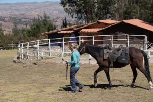 Horseback Rides Huaraz, the Lazy Dog Inn